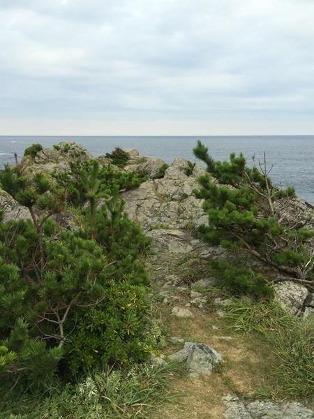 潮岬キャンプ場7